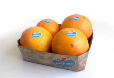 Frusoal quer exportar laranja biológica para a Escandinávia