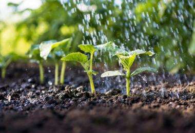 ISQ promove Agricultura Inteligente através do uso de Satélites