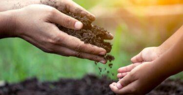 Agricultura familiar VR