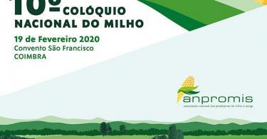 Cartaz VMilho