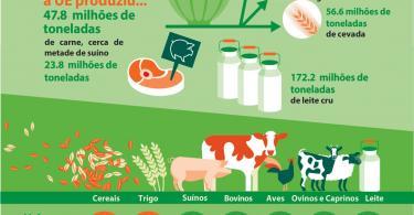 Produção de carne continua a crescer na Europa