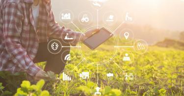 Vida rural tecnologia data