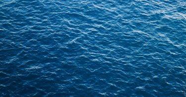 Ascenza apresenta projeto de formulações de origem marinha