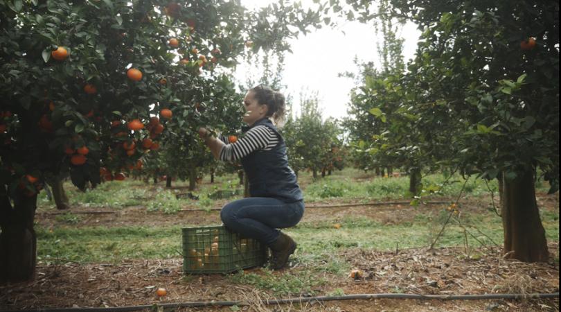 Mulheres de sucesso na agricultura