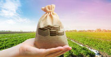 Governo anuncia nova linha de crédito a agricultores