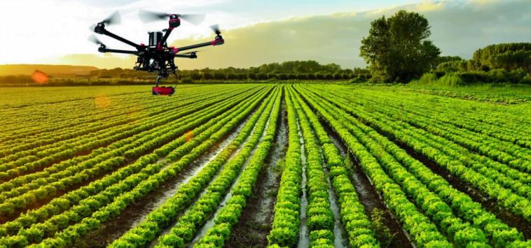 Alltech Crop Science Iberia e Greenfield Technologies com parceria para impulsionar agricultura de precisão