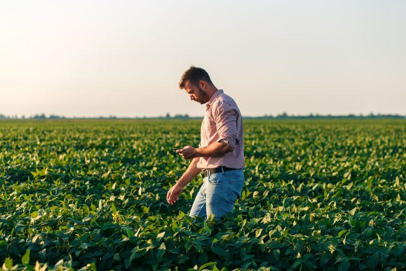Programa Jovem Agricultor já está a decorrer