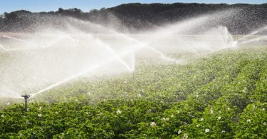 Conselho Europeu com novas regras para reutilização da água para regadio agrícola