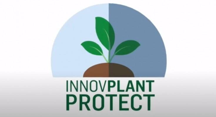 InnovPlantProtect (InPP) desenvolve novos biopesticidas