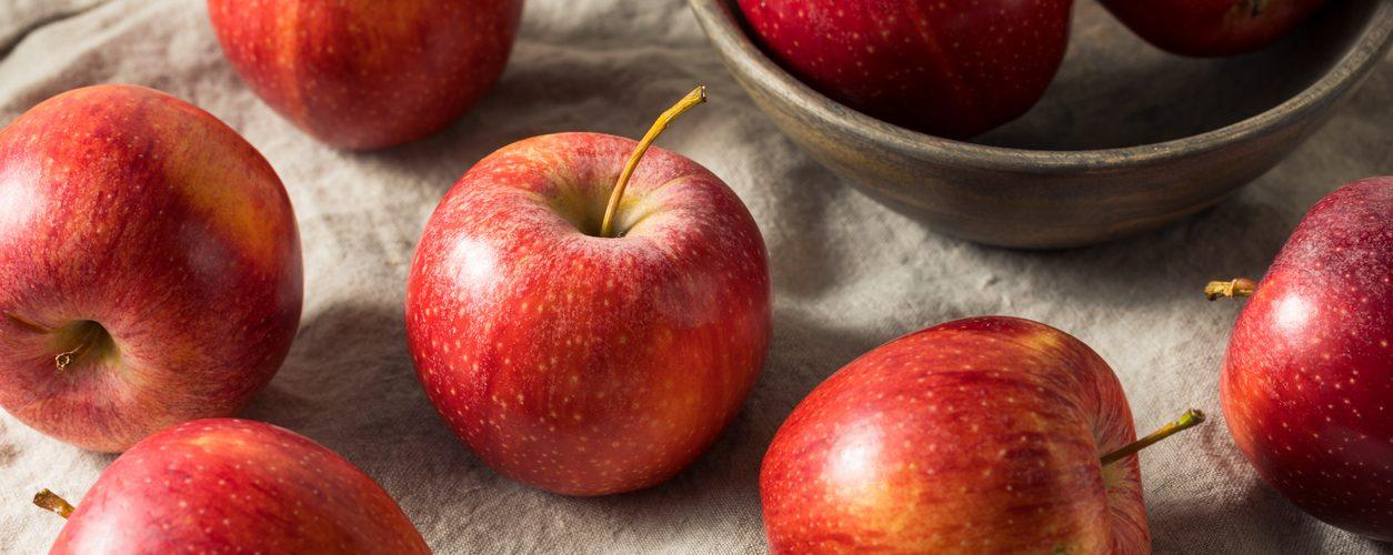 Potencial da aplicação de biofertilizantes em maçã