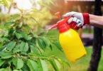 Europol apreende 1346 toneladas de fitofármacos ilegais