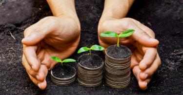 políticas economia agricultura
