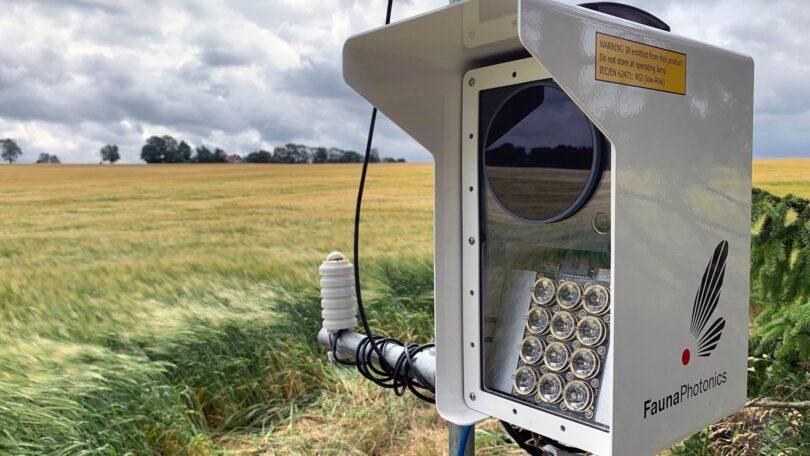 Sensor de monitorização automática de insetos polinizadores