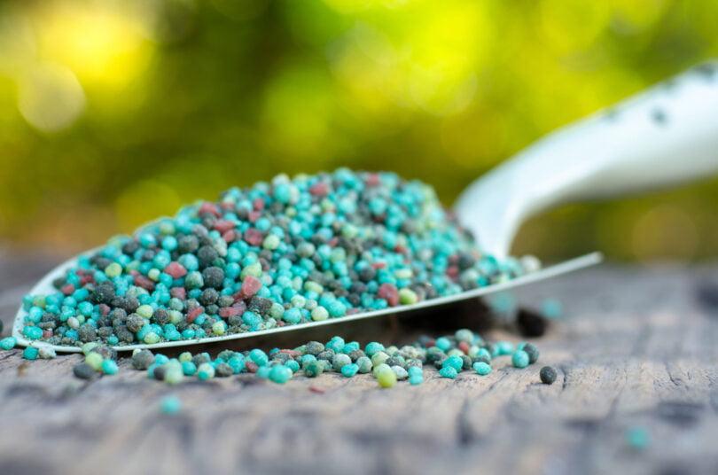 adubos e fertilizantes