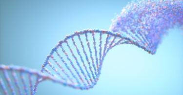 UTAD ADN