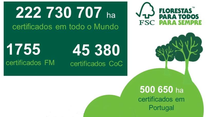 FSC hectares certificados