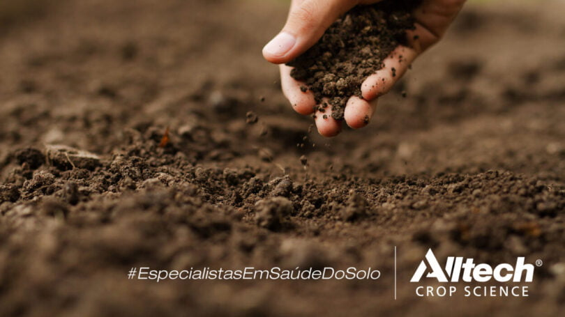 Alltech Crop Science curso