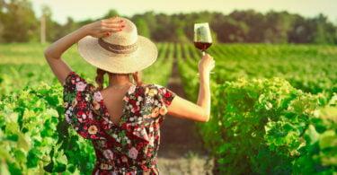 Cooperativas vinícolas europeias pedem apoio extraordinário para o setor