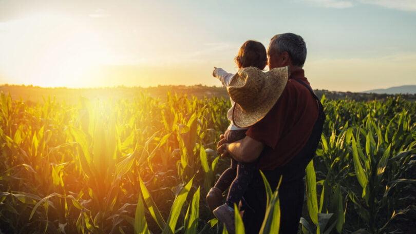 CNA reafirma urgência de apoiar a agricultura familiar