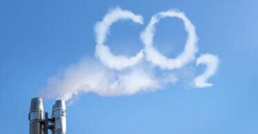 Uma proteína criada a partir do carbono é o objetivo da startup do Reino Unido Deep Branch, que angariou 8 milhões de euros.