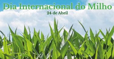 No âmbito do Dia Internacional do Milho, assinalado no dia 24 de abril, a ANPROMIS convidou 10 personalidades a dar a sua visão.