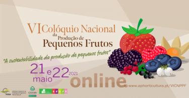 O INIAV, a APH e o COTHN-CC estão a organizar o VI Colóquio Nacional da Produção de Pequenos Frutos, que vai abordar a sustentabilidade.