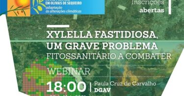 """O grupo """"Novas Práticas em Olivais de Sequeiro"""" vai realizar no próximo dia 6 de maio, às 18h00, o webinar sobre Xylella fastidiosa."""