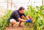A AJAP lançou um inquérito online para identificar as necessidades de qualificação dos Jovens Agricultores e dos Jovens Empresários Rurais.