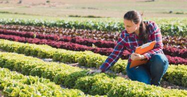 O projeto MAIs - Mulheres Agricultoras de Territórios do Interior, promovido pelo Instituto Politécnico de Viseu, já trabalha no terreno.