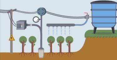 Uma solução IoT (Internet das Coisas) para irrigação desenvolvida no Brasil conseguiu preservar morangos até 60 dias em seca.