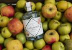 """ALemos Figueiredo - Adega das Frutas de Alcobaça lançou o dry gin Casanova, que utiliza Maçã de Alcobaça """"feia"""", não comercializável."""