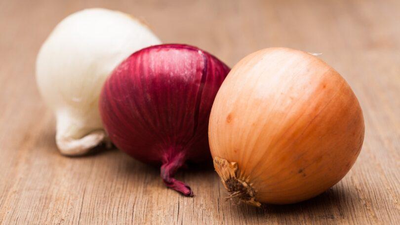 Investigadores dos Países Baixos desvendaram o genoma da cebola, ajudando no desenvolvimento de novas variedades e na crescente procura.
