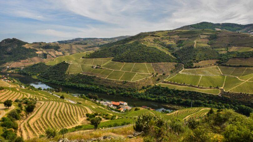 A intensa queda de granizo registada nas freguesias de Abaças e Guiães, no concelho de Vila Real, pode ter comprometido as vindimas.