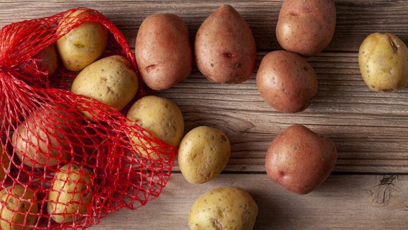 Através da tecnologia de edição genética, investigadores da China aceleraram o processo de reprodução de batata.