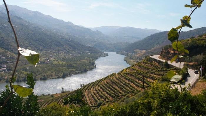 """O Ministério da Agricultura quer retomar o processo de reinstitucionalização da Casa do Douro """"no terceiro trimestre deste ano""""."""