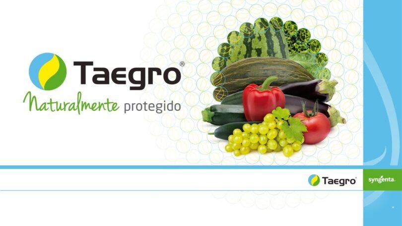 A Syngenta apresentou um novo biofungicida, o Taegro. Este novo produto pretende proteger a vinha e as culturas hortícolas contra doenças.