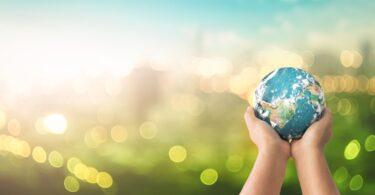 A Bayer anunciou o lançamento europeu da sua Iniciativa de Carbono global, que tem como objetivo a descarbonização da cadeia alimentar.