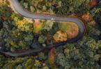 A Comissão Europeia colocou em prática oficialmente a nova Estratégia Florestal Europeia para 2030, no âmbito do Pacto Ecológico Europeu.