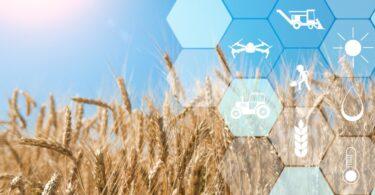 46,2% dos produtores considera o custo/investimento como o maior entrave à adoção de Agricultura de Precisão, num inquérito do AgroIN.