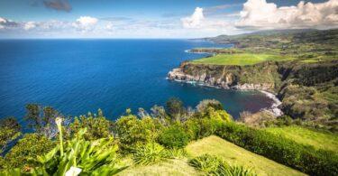 """O Governo Regional dos Açores revelou estar à espera que o Instituto da Vinha e do Vinho """"esteja a funcionar em pleno"""" no """"início"""" de 2022."""
