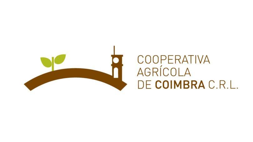 A Cooperativa Agrícola de Coimbra 8Agricultores do Vale do Mondego) apelou à Ministra da Agricultura para que mantenha a promessa dos pagamentos ligados ao milho em 2022.
