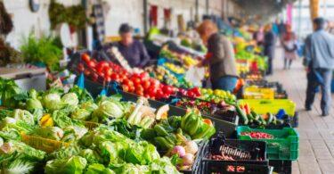 O tomate e o milho são os produtos agroalimentares com mais variedades agrícolas e hortícolas declaradas em Portugal.