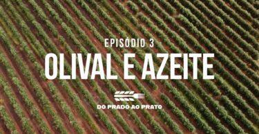 A preservação dos recursos e da biodiversidade na produção de azeite é uma das práticas em destaque no terceiro episódio do 'Prado ao Prato'.