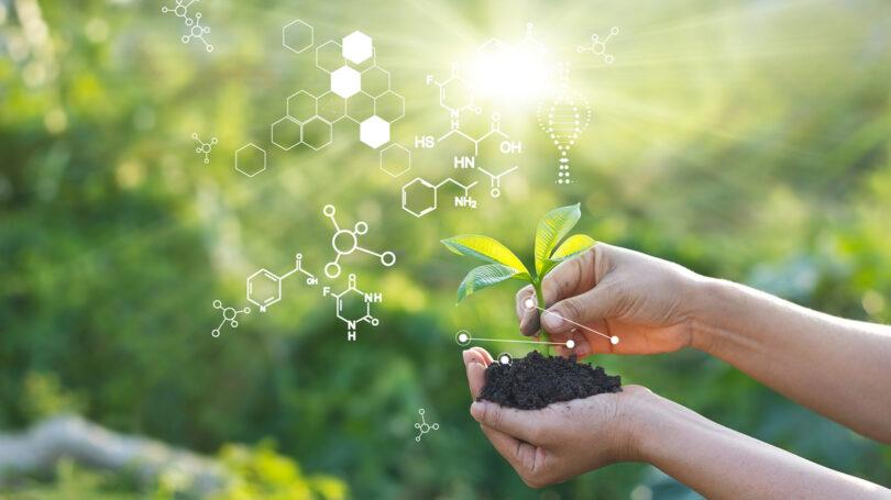 O grupo científico da Cimeira dos Sistemas Alimentares das Nações Unidas reconheceu a edição genética como importante contra a fome mundial.