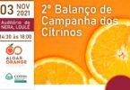 Loulé vai receber o 2.º Balanço da Campanha dos Citrinos a 3 de novembro. O evento é organizado pela AlgarOrange e pelo COTHN.