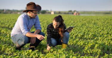 Os concursos para candidaturas ao financiamento de projetos de investigação, desenvolvimento e inovação na agricultura já abriram.