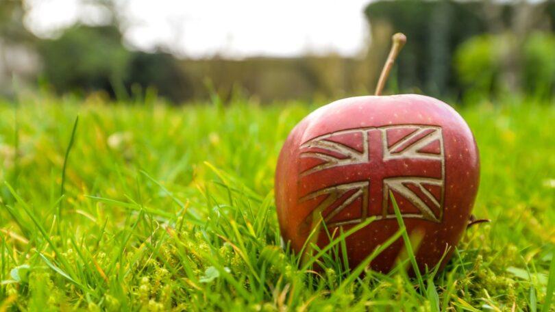 A CAP alertou para afalta de preparação do Governo britânicoe para a eventual necessidade de corredores verdes.